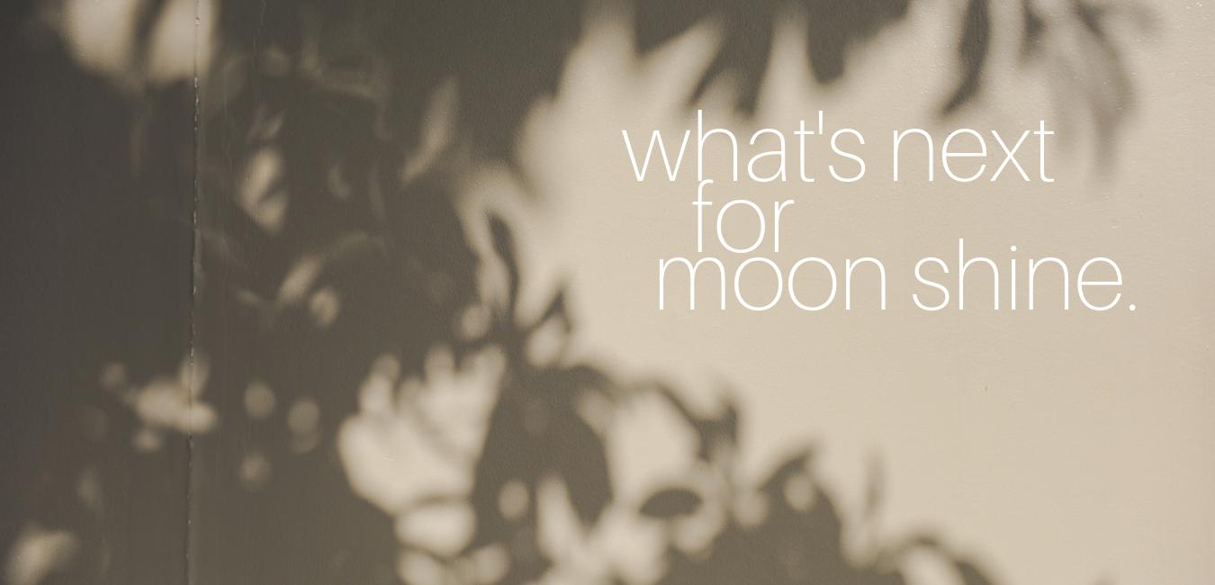 linkedin - moon shine graphics.png