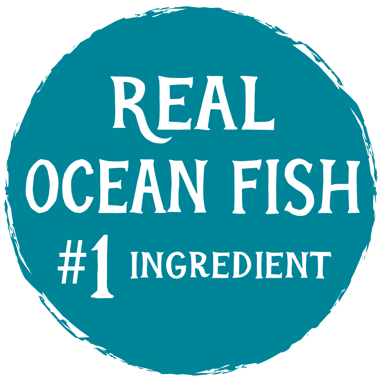 CatOceanFishFormulaCanCallouts-09.png