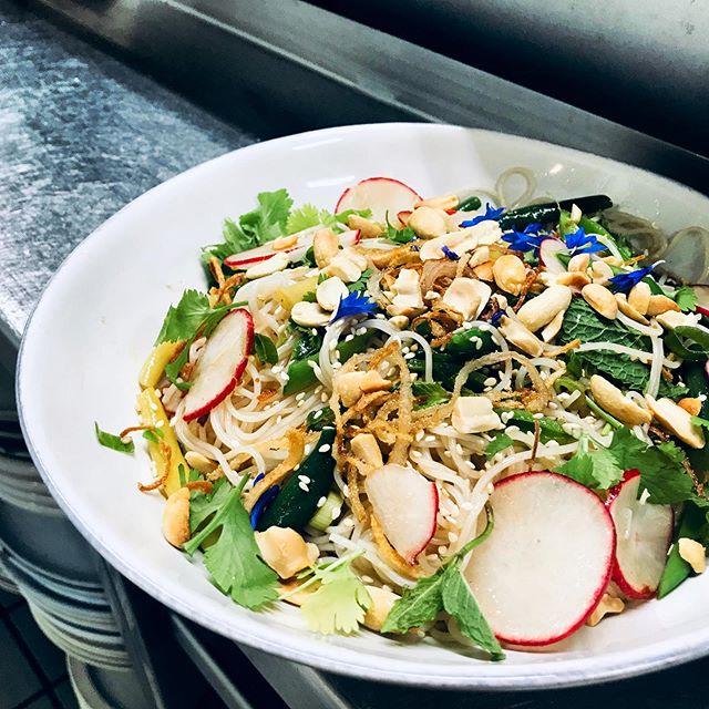 Vietnamese Inspired Cold Noodle Salad with black garlic Vietnamese vinaigrette #summerbeans #peanuts #herbs #blackgarlic #vietnamesefood #newmenu #monday #downton #sanfrancisco