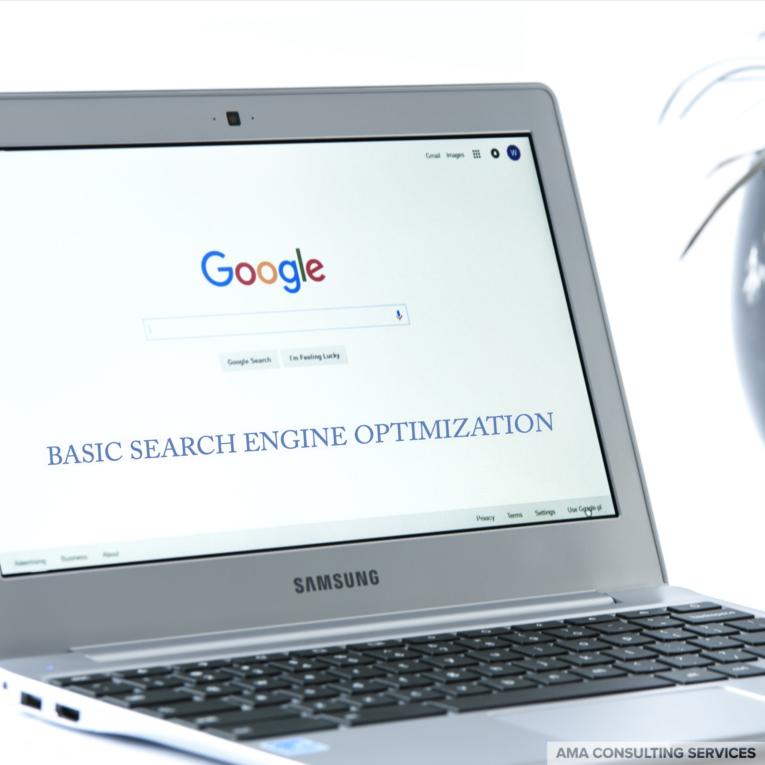 basic-search-engine-optimization.jpg
