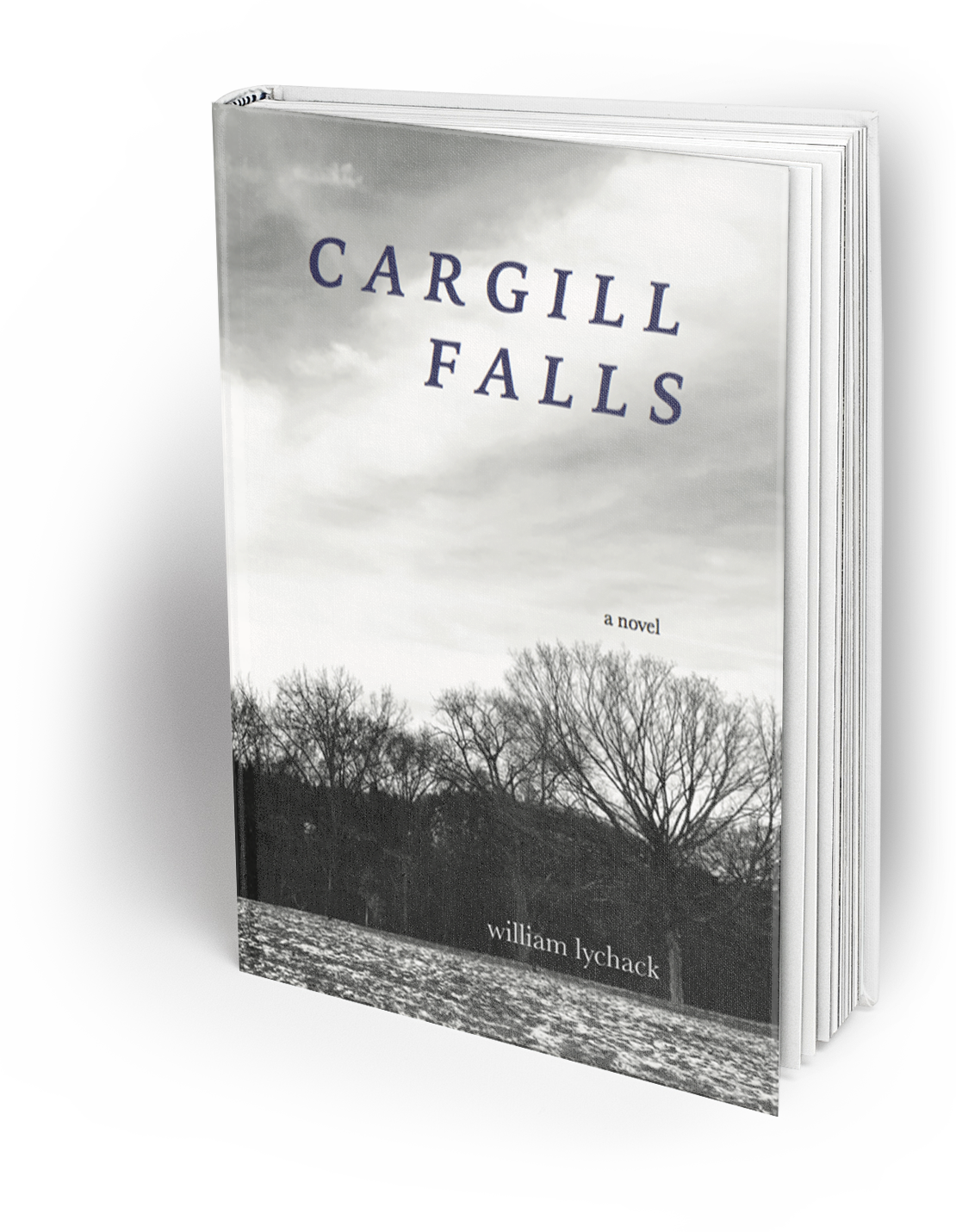 "Reviews for Cargill Falls - ""Cargill Falls is an immediate classic. At once essential and profound and hugely entertaining, the story of the two boys at the heart of this book, and the men they become, follows in the tradition of great coming of age stories like Stand by Me, and then twists and reinvents and does the tradition better, upending all that we know and expect. It's rare to come across books like this. A writer hopes that once in his or her life he or she can write something so honest.""     —Charles Bock, Beautiful Children""In how it slows down the world, William Lychack's Cargill Falls achieves something quite unexpected: this is a book that makes your heart drum loudly, that leaves you breathless under the tall canopy of a forest in Connecticut in the 1980s, that pulls you toward a single day's burning, bright core. Not since William Maxwell's So Long, See You Tomorrow has a novel captured so wondrously the landscape of youth, regret, mystery, and violence, and done it with such tenderness, humor, and raw, wild energy.""     —Paul Yoon, Snow Hunters""William Lychack's exquisite sensibility of language combines with delicate dramatic tension as he explores the possible meaninglessness of causality. What if one event is not related to another? This is the best novel about adolescent boys I can remember.""     —Blanche McCrary Boyd, Tomb of the Unknown Racist ""A double dimension dream of a book, Cargill Falls trapezes adroitly between the quotidian's ancient ache and the elusive, gleamingly provocative escutcheon of the ideal. It is moving, tender, and compelling from start to finish.""     —Patrick McCabe, The Butcher Boy"