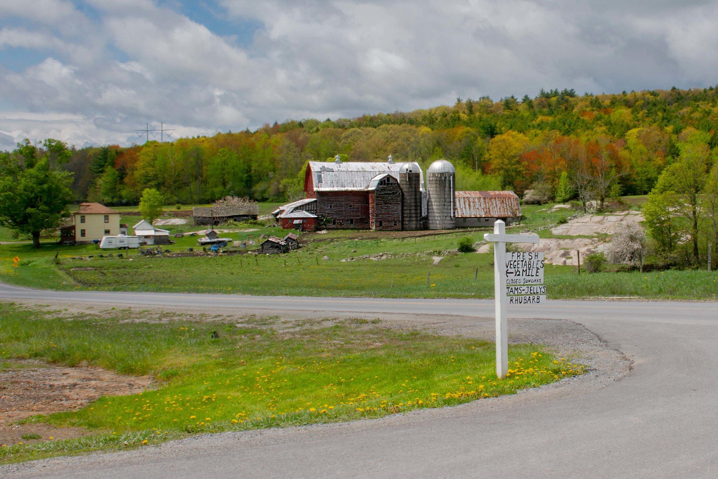 farm fresh 5579  12x8 300ppi.jpg