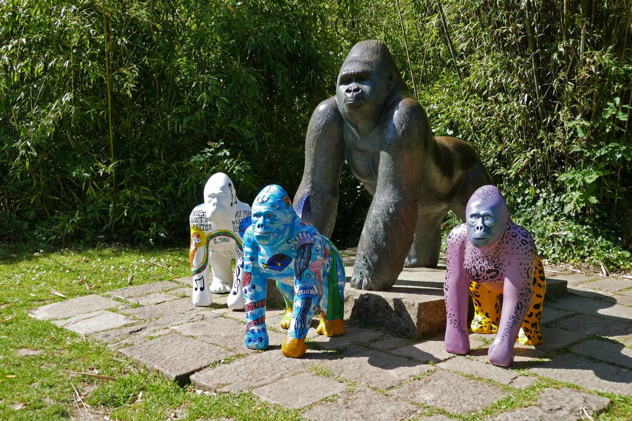 Small-gorillas2-e1562245484870.jpg
