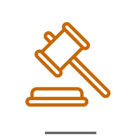 Litigation-Icon-2.jpg
