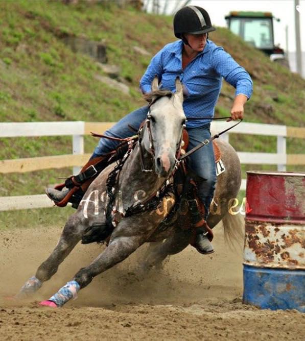 2006 duchess foal LER Delta Lena.jpg