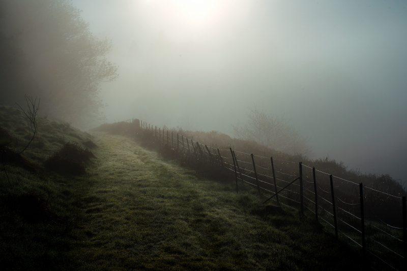 Foggy-Track-Lochavich-_UNFLAT-800x534.jpg