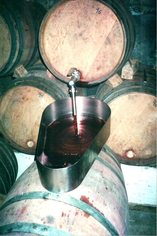 winemaking 2.jpg