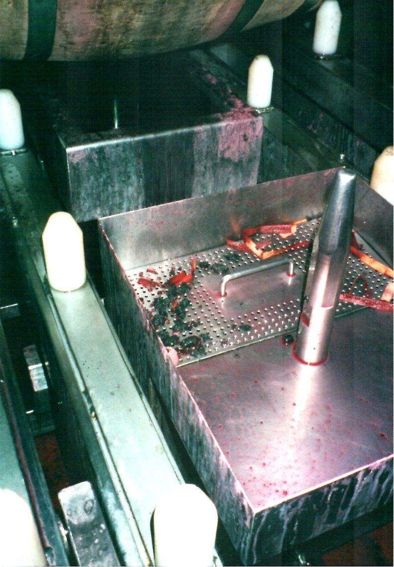 winemaking 1.jpg