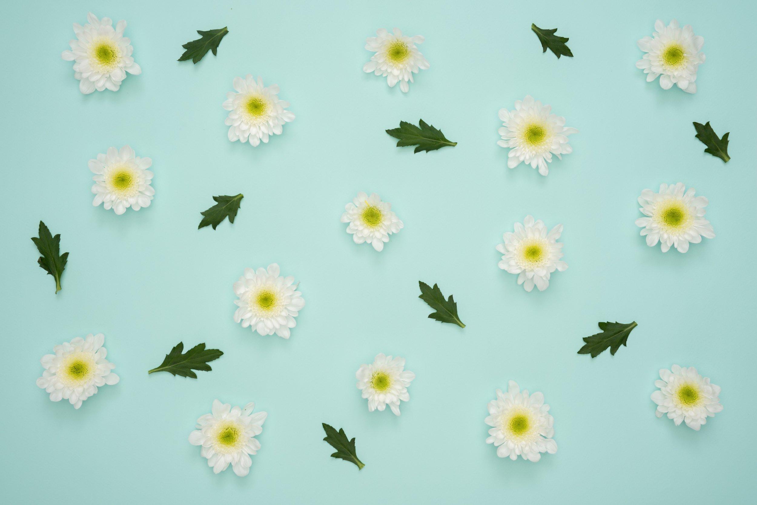 beautiful-blooming-blue-background-1038001.jpg