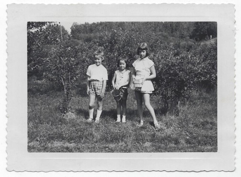 Picking blueberries; Heather, Laurey age 6, Lucinda