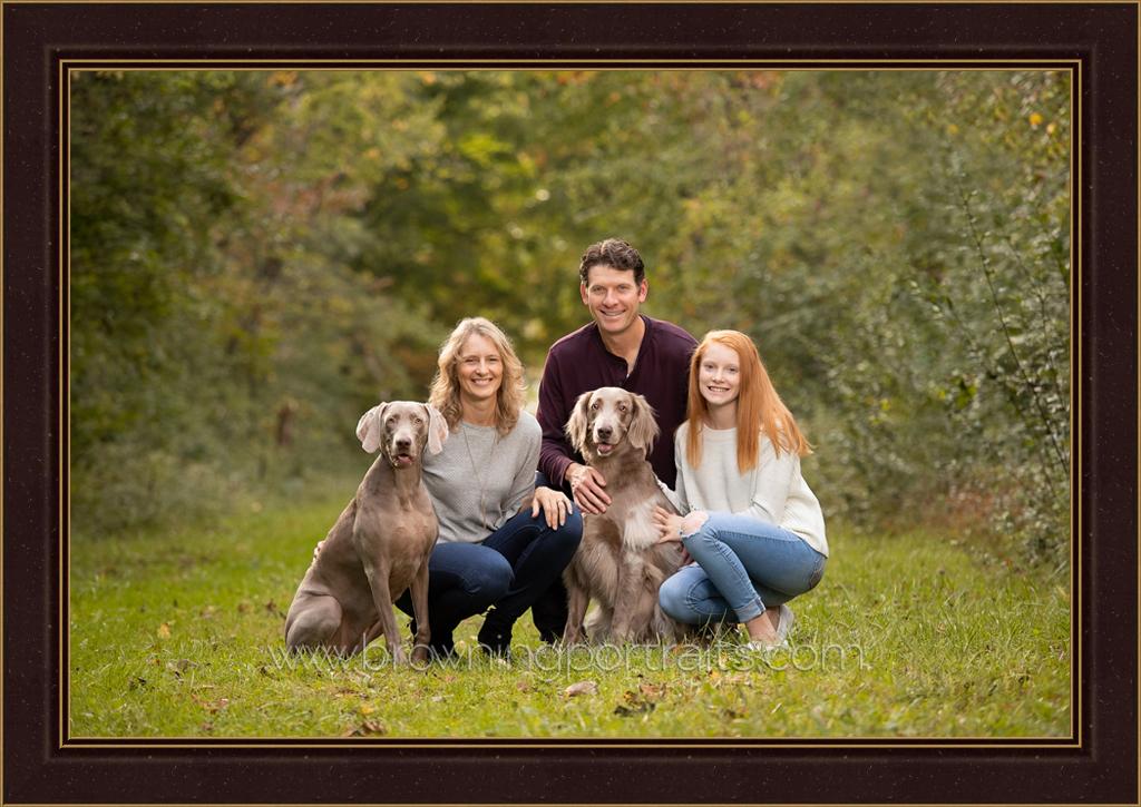 dog family portrait columbus ohio