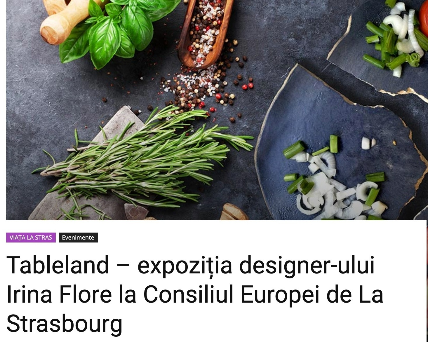 New article about Tableland - Article about the Tableland exhibition at the European Council in lastrasbourg.ro