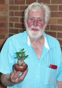 Tom with one of his favourite figs.