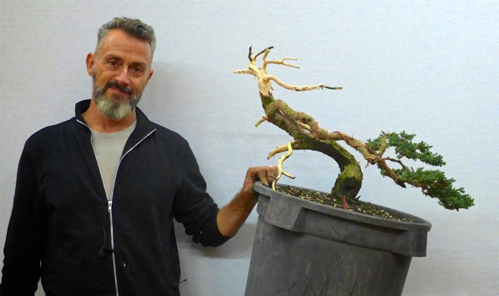 Rui with the finished tree.