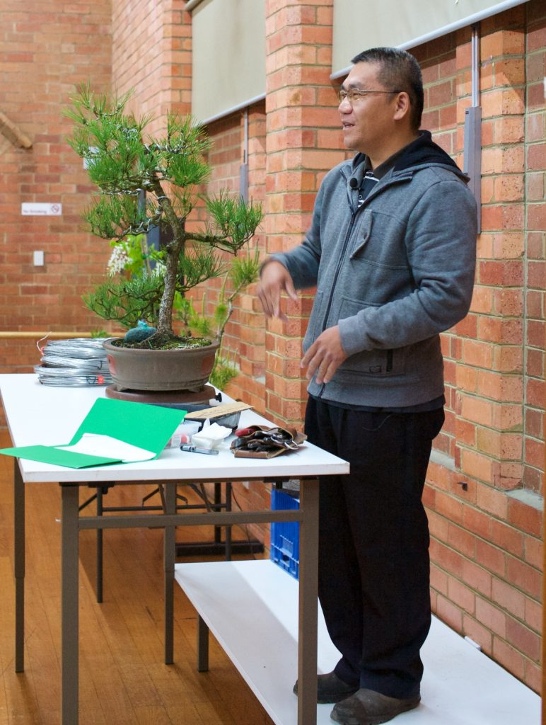 Tien talking about the planned styling of this Black Pine.