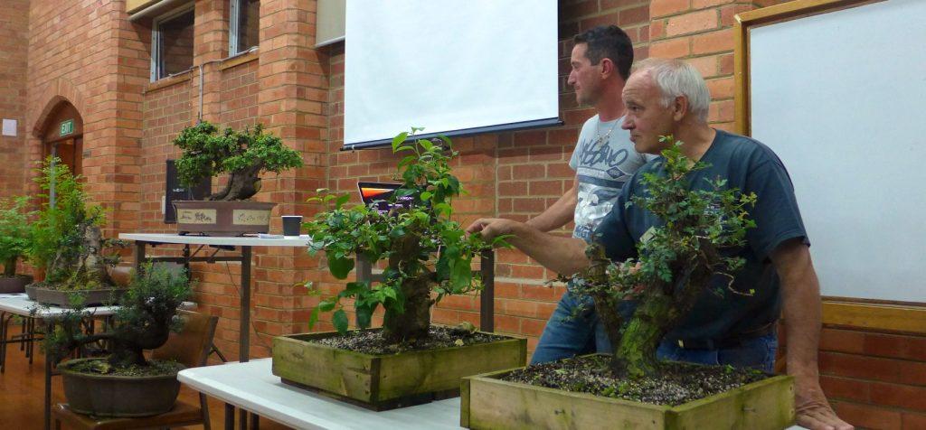John & Dave talking about Yamadori