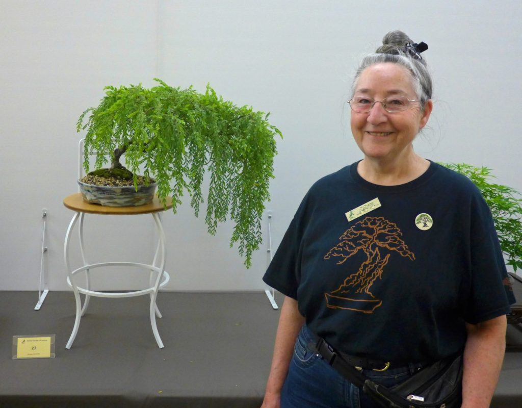 Val and her winning Sticky Wattle bonsai.