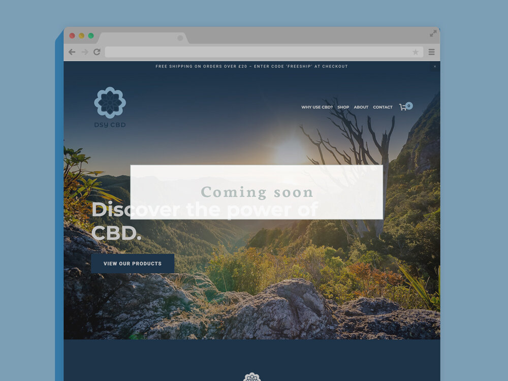 DSY CBD Website Squarespace Ecommerce Build and Design