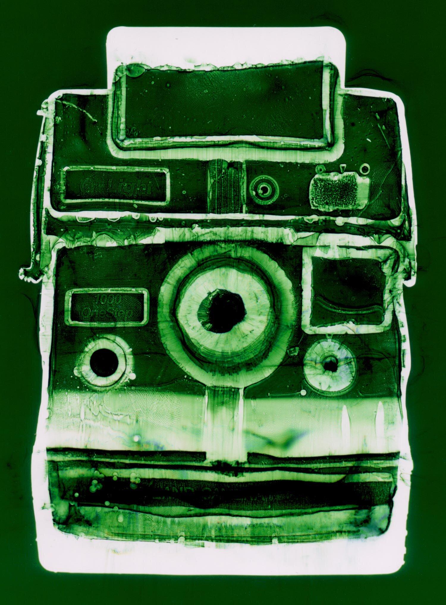 Polaroid (green),  Penelope Davis, 2003, type c print, 125x94cm