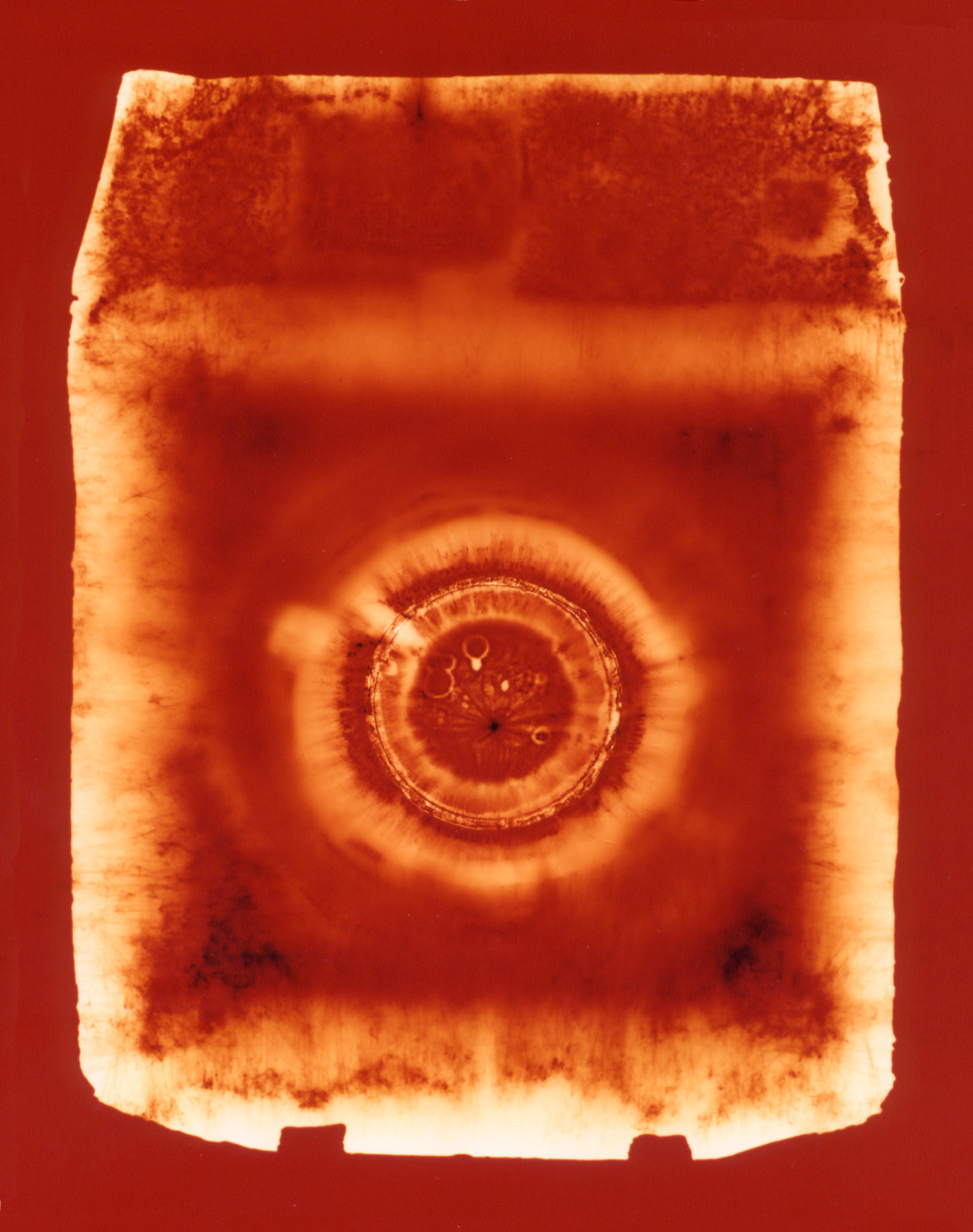 Press (orange),  Penelope Davis, 2003, type c print, 125x94cm