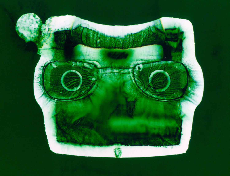Viewmaster (green),  Penelope Davis, 2003, type c print, 76x102cm