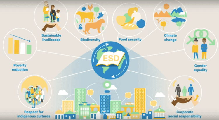 """The UN Education for Sustainable Development (ESD) initiative- - """"encourages every human being to acquire the knowledge, skills, attitudes and values necessary to shape a sustainable future..….Education for Sustainable Development requires far-reaching changes in the way education is often practised today."""
