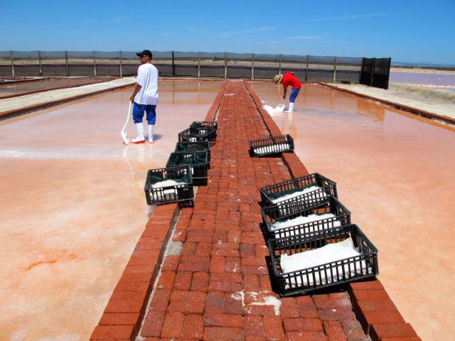 Khoisan Salzgewinnung - Unsere Mitarbeiter schöpfen das wertvolle Rohmaterial per Hand ab