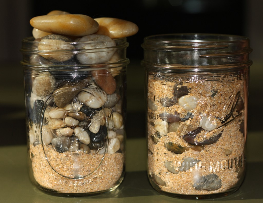 Does you health and fitness represent the pebbles, the rocks or the sand?