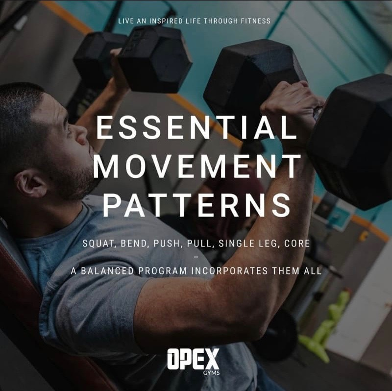 Essential Movement Patters for Great Health and Fitness