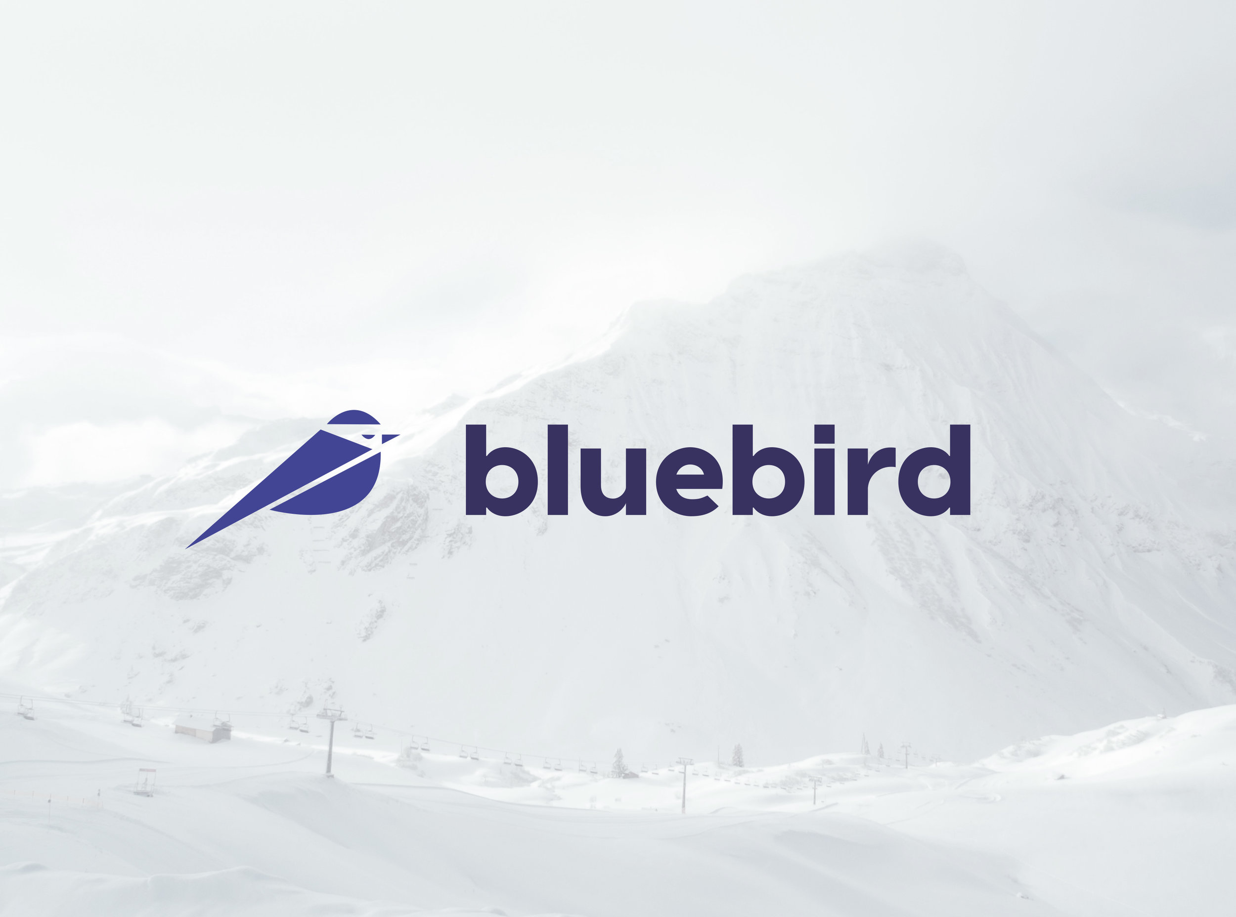 photo with logo.jpg