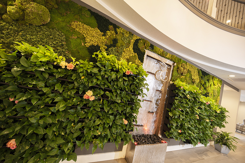 The Echelon Vertical Garden Wall.jpg