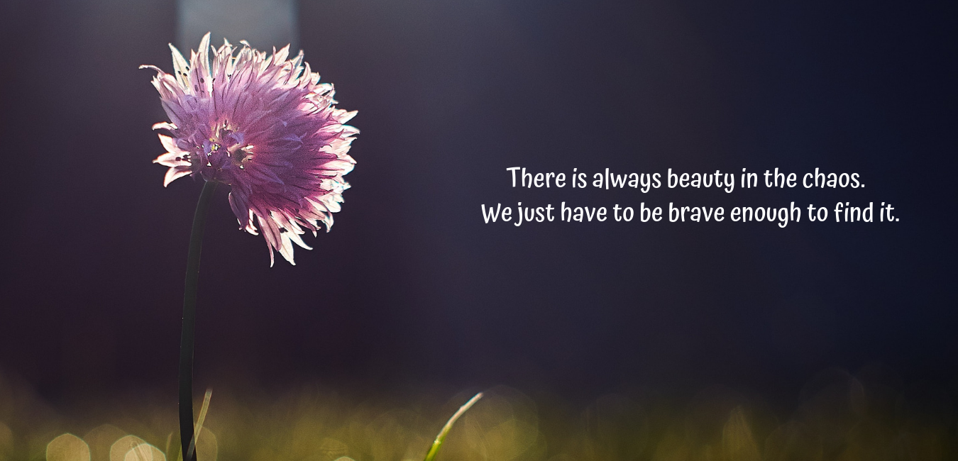 There is always beauty in the chaos. We just have to be brave enough to find it..png