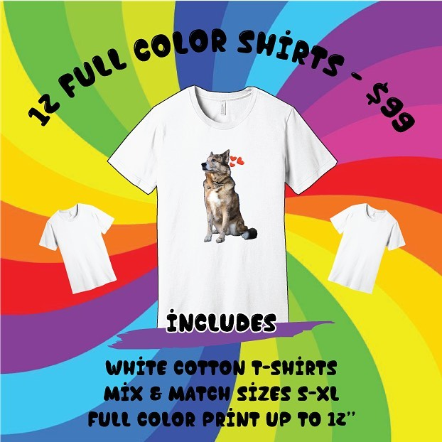 🍭Our favorite soft white tee can be the canvas for your wild imagination, now through the end of September for the low-low price of $99! Perfect for PRIDE 🌈, events, holiday gifts, regular gifts, all the gifts, bachelorettes or maybe you just want 12 of the same tee shirt - we're not here to judge. ⁠These print full color, so there's no limitation on the level of ridiculousness... ⁠⠀ Email us at ordres@tulipcake.com to claim your prize.⁠⠀ #tees #customtees #youcangetit #tulipcake #dtg #bellacanvas #lupoisagoodboy #lupoisthebestboy