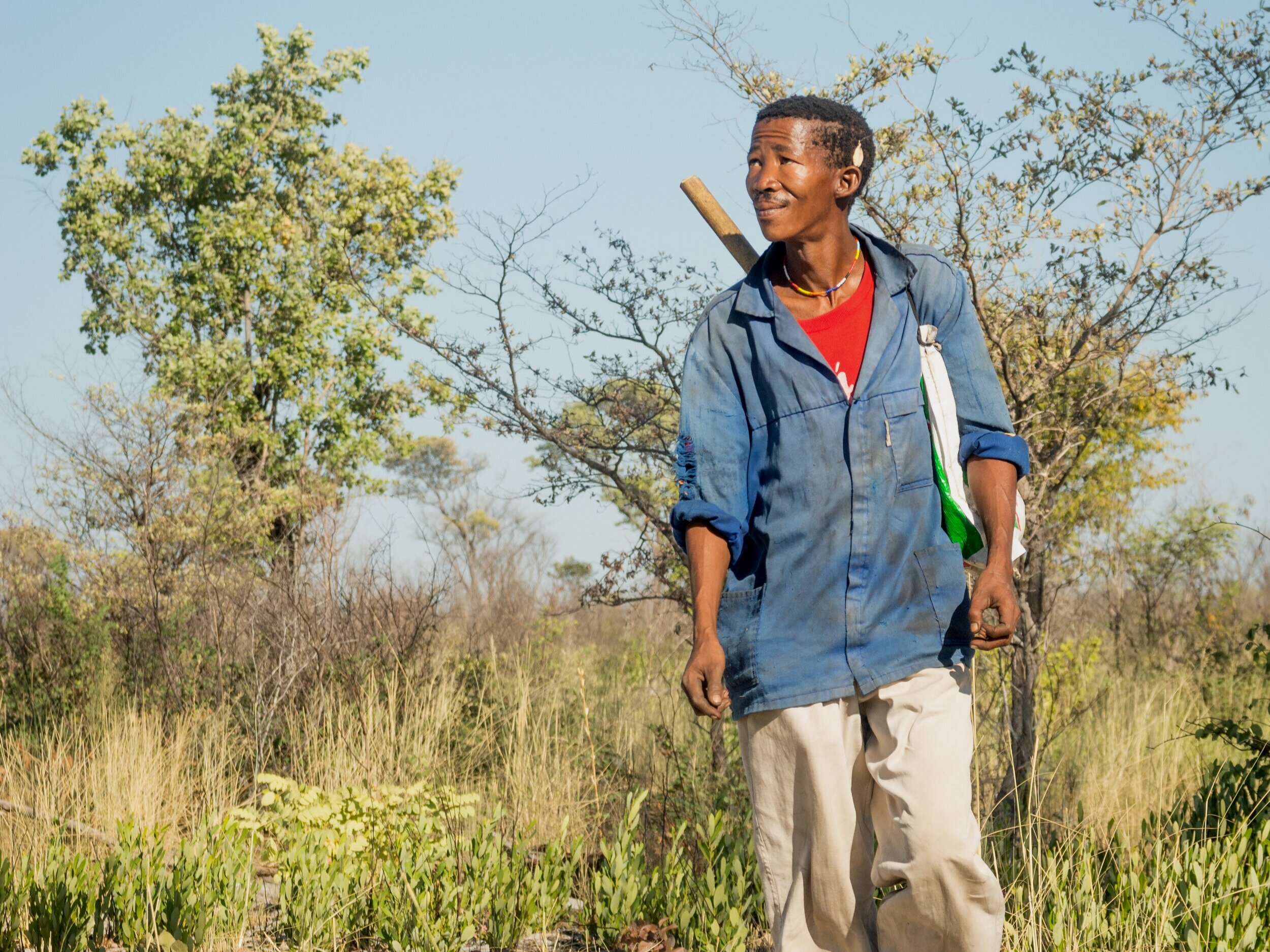 Demonstrating proof of concept. - Pilot projects in Southern Africa are testing the reintroduction of Indigenous Fire Management in real world conditions. Learn more about where we work and our pilot projects in the Tsodilo Hills, Chobe and the Central Kalahari Game Reserve,, Botswana.