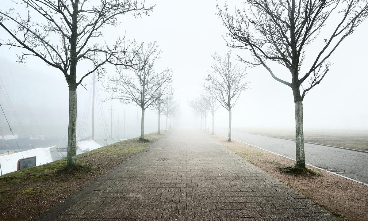 www.alexstemmer.com_blog_2017_Kiel_fog16.jpg