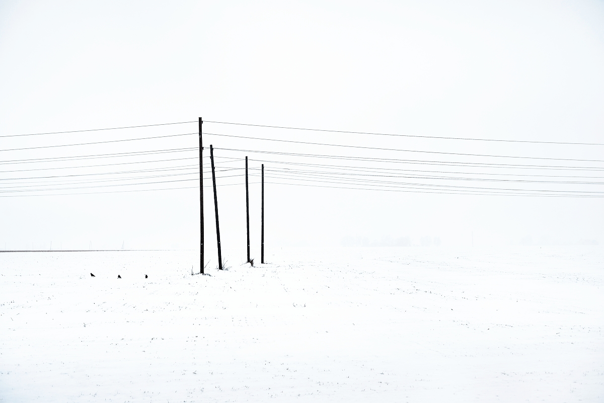 AS6_1446.jpg