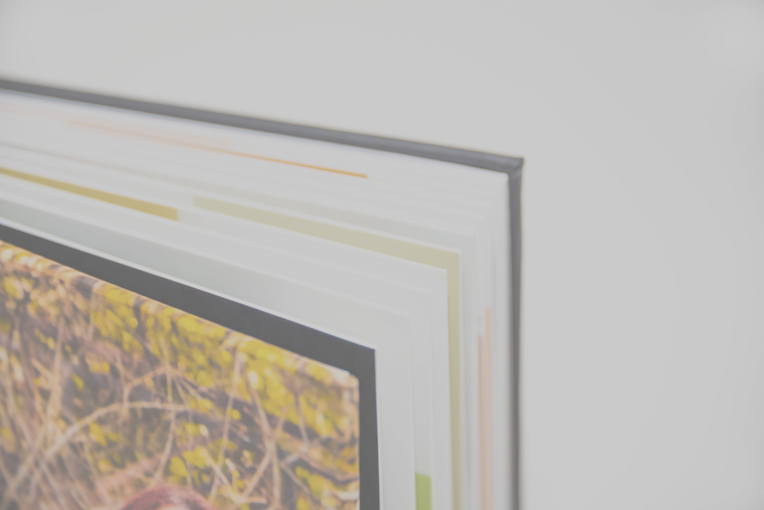 Albums - Handmade albums starting at only $499