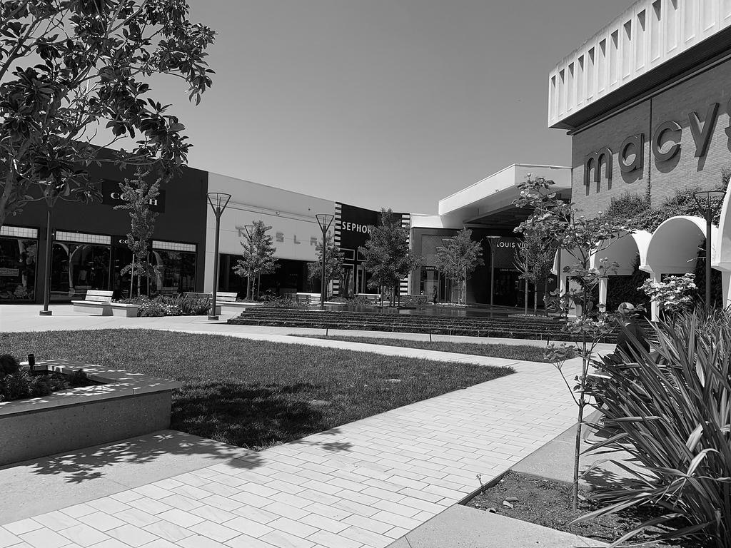 Stanford Macy's.jpg