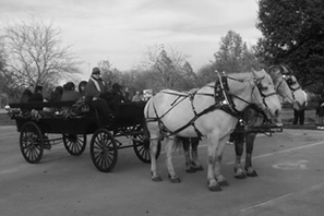 8-10 Passenger Wagon