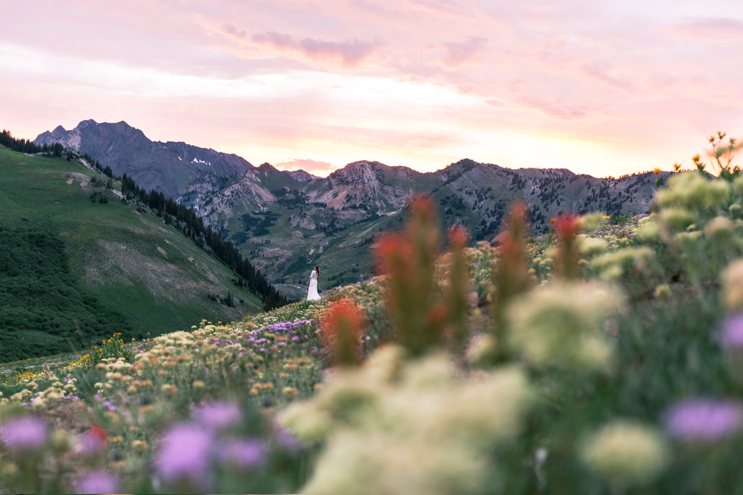 bride-mountains-wildflowers-sunset