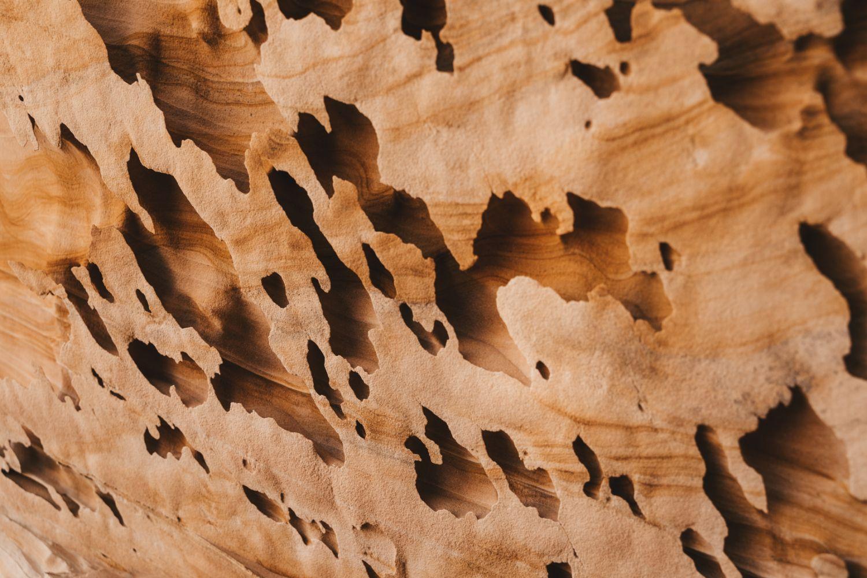 natural-rock-features-whitepocket-Utah