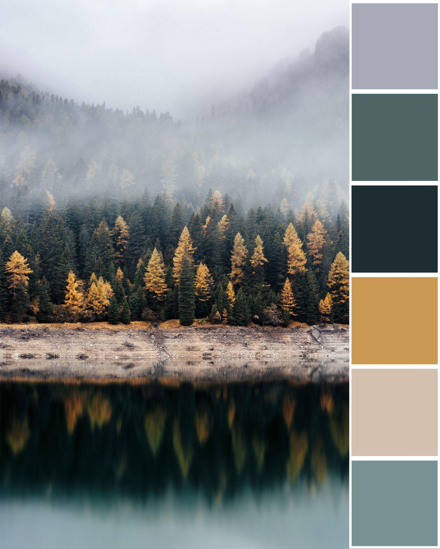 forest-fog-color-palette.jpg