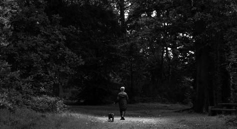 b62a5420c0342acc7d8cbdb8cf1e96fe--tree-photography-photography-women.jpg