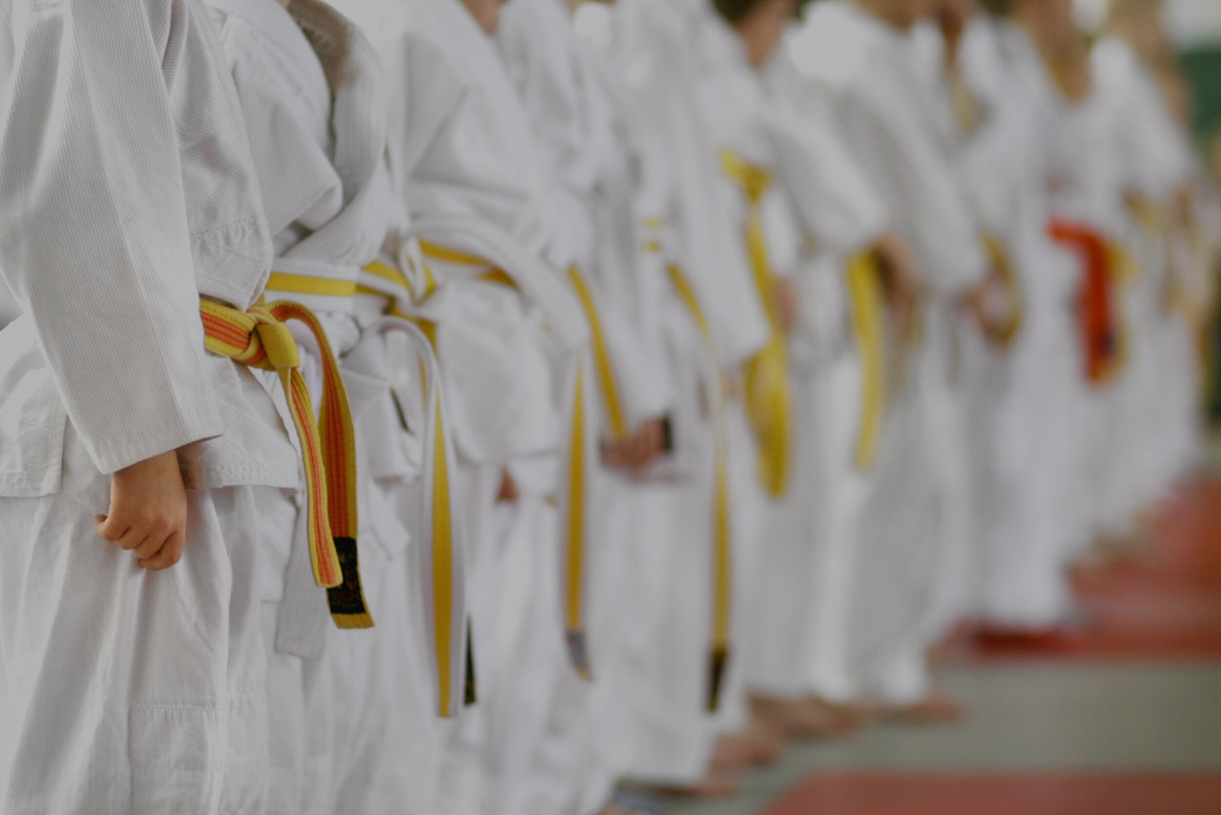Providing Excellence in Martial Arts Training -