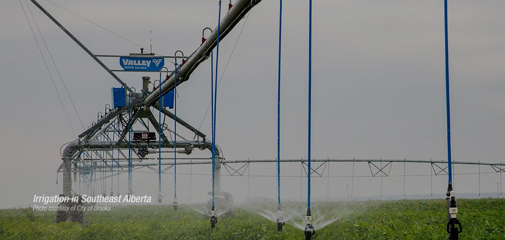 Regional_Farming.jpg