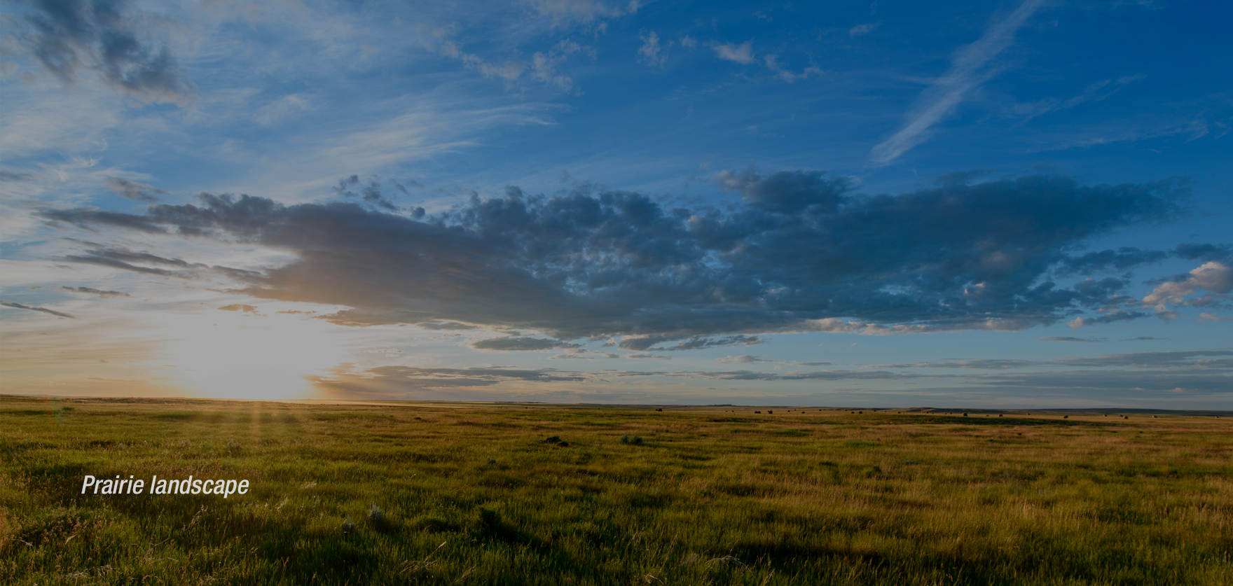 Regional_Prairie.jpg