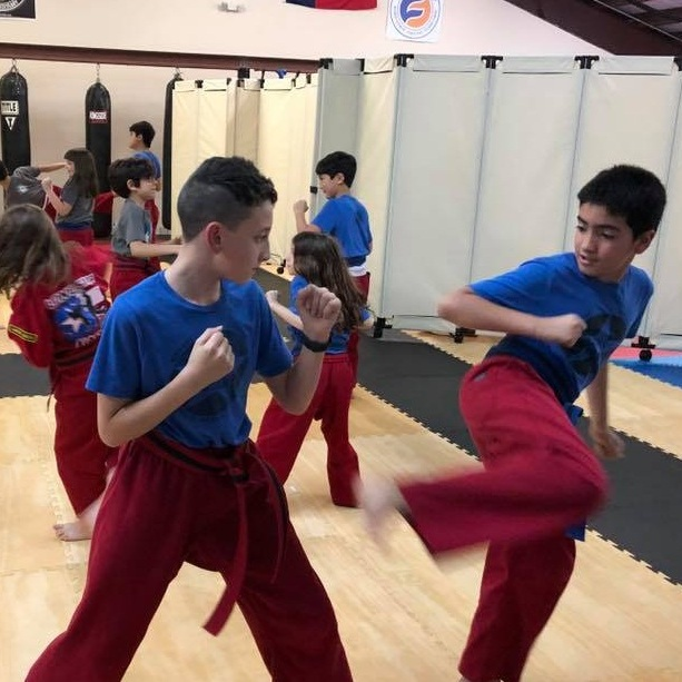 KIDS KARATE - At Lone Star Karate & Self Defense, our goal every day is to help students all across the community stay active and take pride in everything they do. Our Kids Martial Arts program is broken down into two groups, including our Little Ninjas training for ages 4-8 and our Juniors training for ages 9-14.