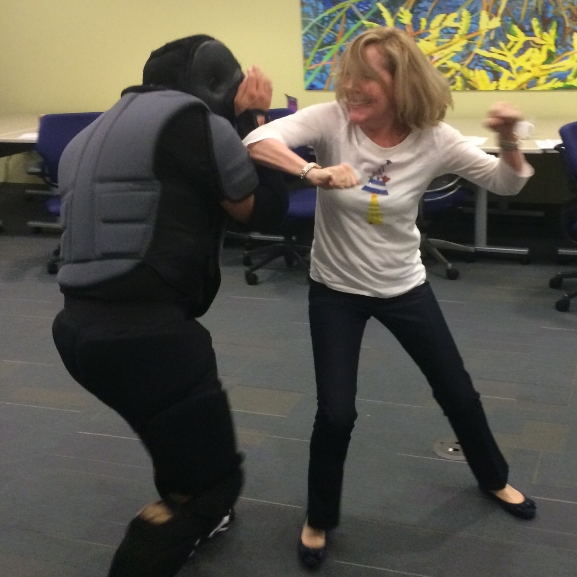 SElf Defense Workshops - Specialized self defense training for your small group, organization, or business at your place or our facility.