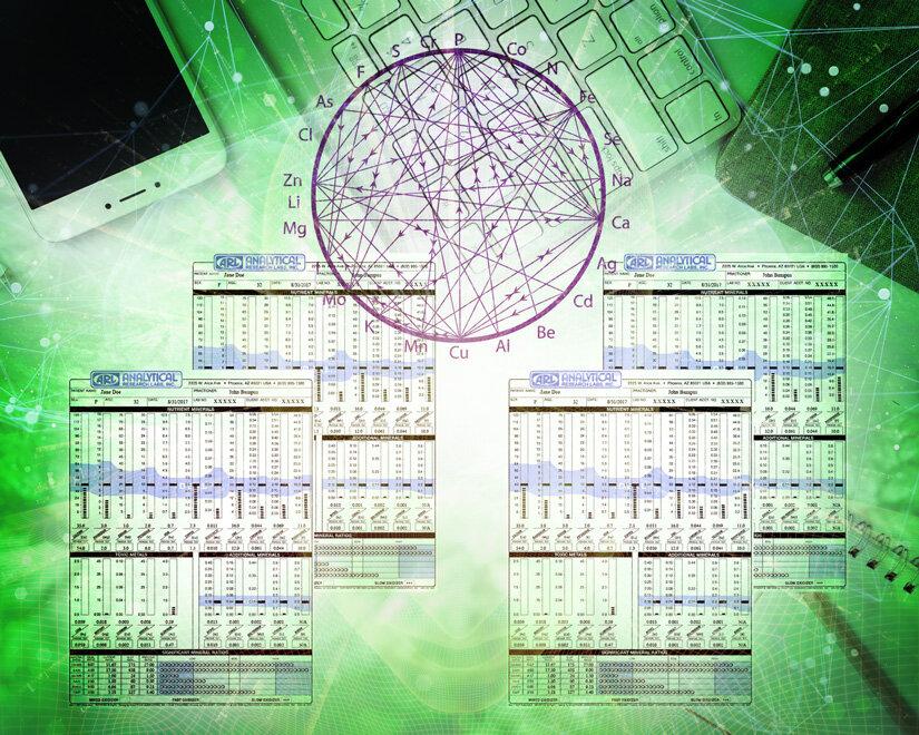 HTMAProgram_12month.jpg