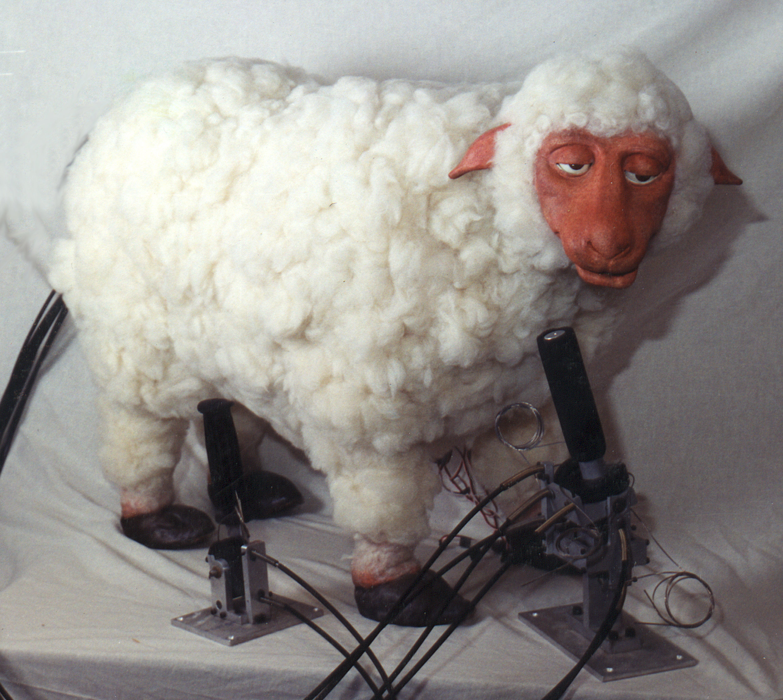 Animal Makers_Sheep 2.JPG